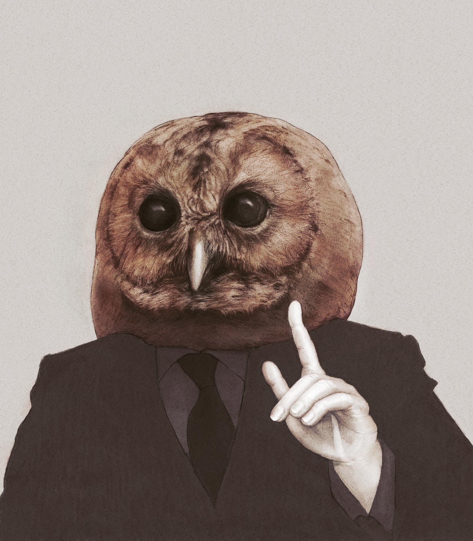Ploomers Owl