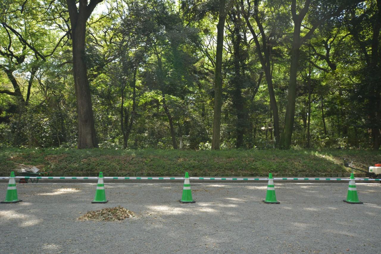 Ploomers Japan 02